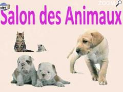 picture of Salon des Animaux