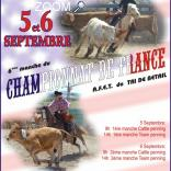 photo de WESTERN.CHAMIONNAT DE FRANCE DE TRI DE BETAIL AFET.