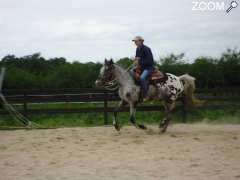 picture of Equitation western et camping dans un Ranch