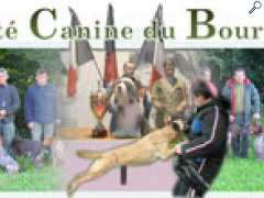 фотография de Exposition Canine Internationale