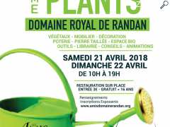 photo de 6e Randanplants